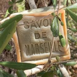 SAVON DE MARSEILLE OLIVE - EXTRA PUR 72% | CUBE 300 G.