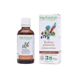 Herbiolys gemmothérapie Bouleau pubescent 50mL BIO - Betula pubescens