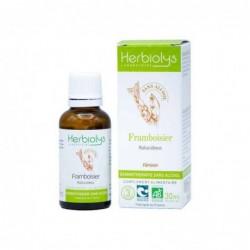 Herbiolys gemmothérapie sans alcool Framboisier 30mL BIO - Rubus idaeus
