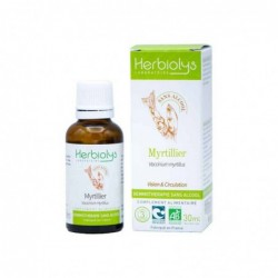 Herbiolys gemmothérapie sans alcool Myrtillier 30mL BIO - Vaccinium myrtillus