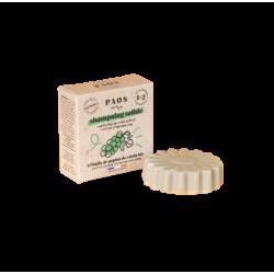 Shampoing solide huile de pépins - bio