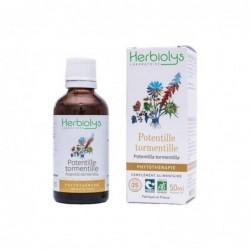 Herbiolys PHYTO Potentille tormentille 50mL - Potentilla tormentilla/erecta