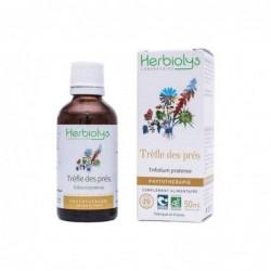 Herbiolys PHYTO Trèfle des prés 50mL BIO - Trifolium pratense