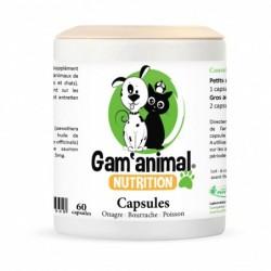 Gam'Animal - O.B.P. - 60...
