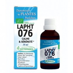 Complexe Lapht 076 - Calme...