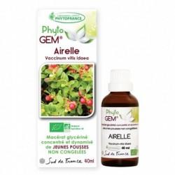 Gemmothérapie Airelle Rouge Bio