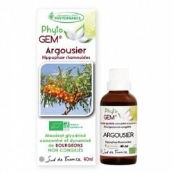 Gemmothérapie Argousier