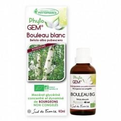 Gemmothérapie Bouleau Blanc bio
