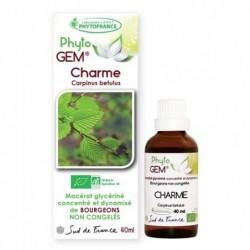 Gemmothérapie Charme