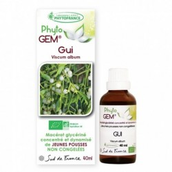 Gemmothérapie Gui Du Pommier