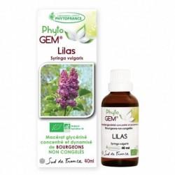 Gemmothérapie Lilas