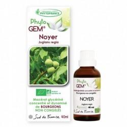 Gemmothérapie Noyer