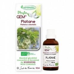 gemmotherapie-platane