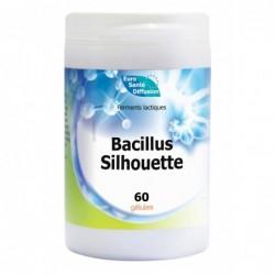 Bacillus Silhouette -...