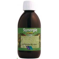 Synergie Du Fumeur (Bio) -...