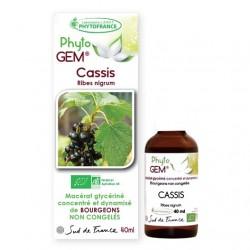 Gemmothérapie Cassis