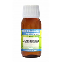 Teinture mère LAMPSANE COMMUNE BIO - 125ml - Phytofrance