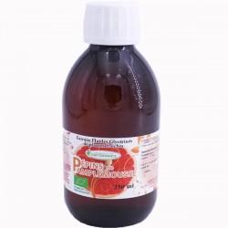 EXTRAIT PEPINS PAMPLEMOUSSE (BIO) - Phytofrance - 125ml