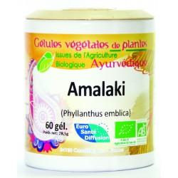 GELULES VEGETALES AMALAKI -...