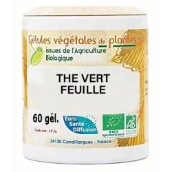 Gélules végétales thé vert feuille