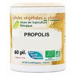 Gélules végétales propolis