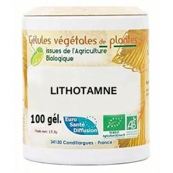 Gélules végétales lithotamne