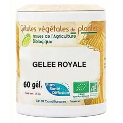 Gélules végétales gelée royale