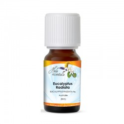 Huile Essentielle Eucalyptus Radiata (Bio)
