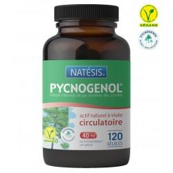Pycnogenol 40 mg / 120 Gélules