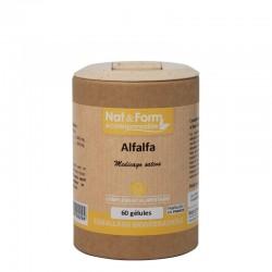 Alfalfa 60 gélules